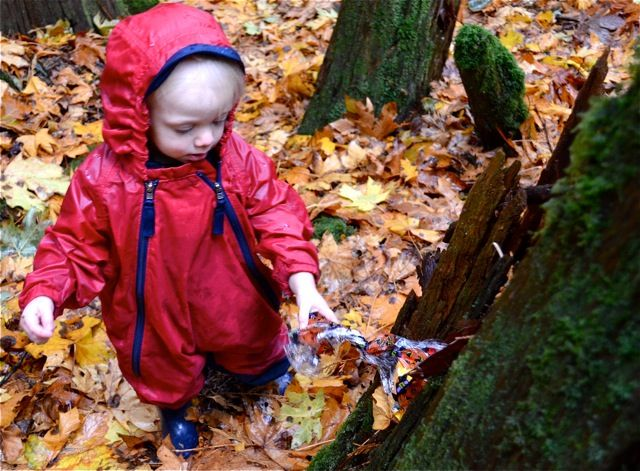 Families in Nature Program. Hope, BC. www.hopemountain.org