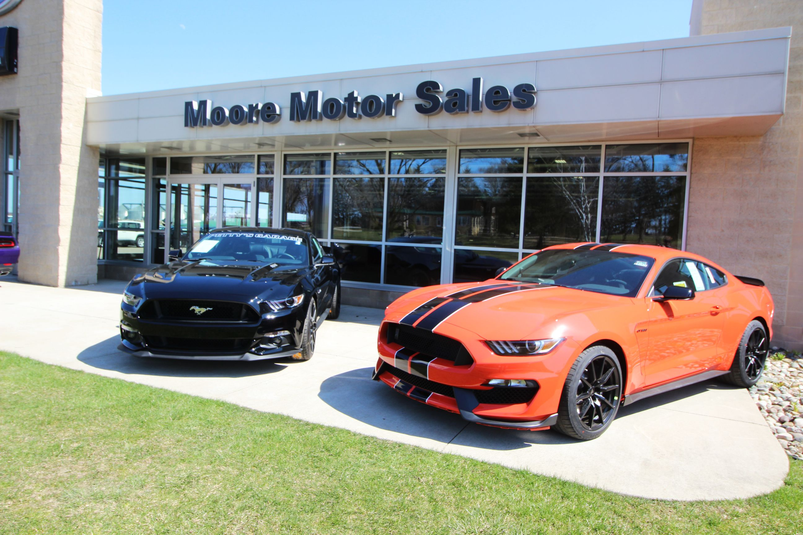 Two Rare Mustangs In Front Of Our Dealership New Dodge Dealership Chrysler