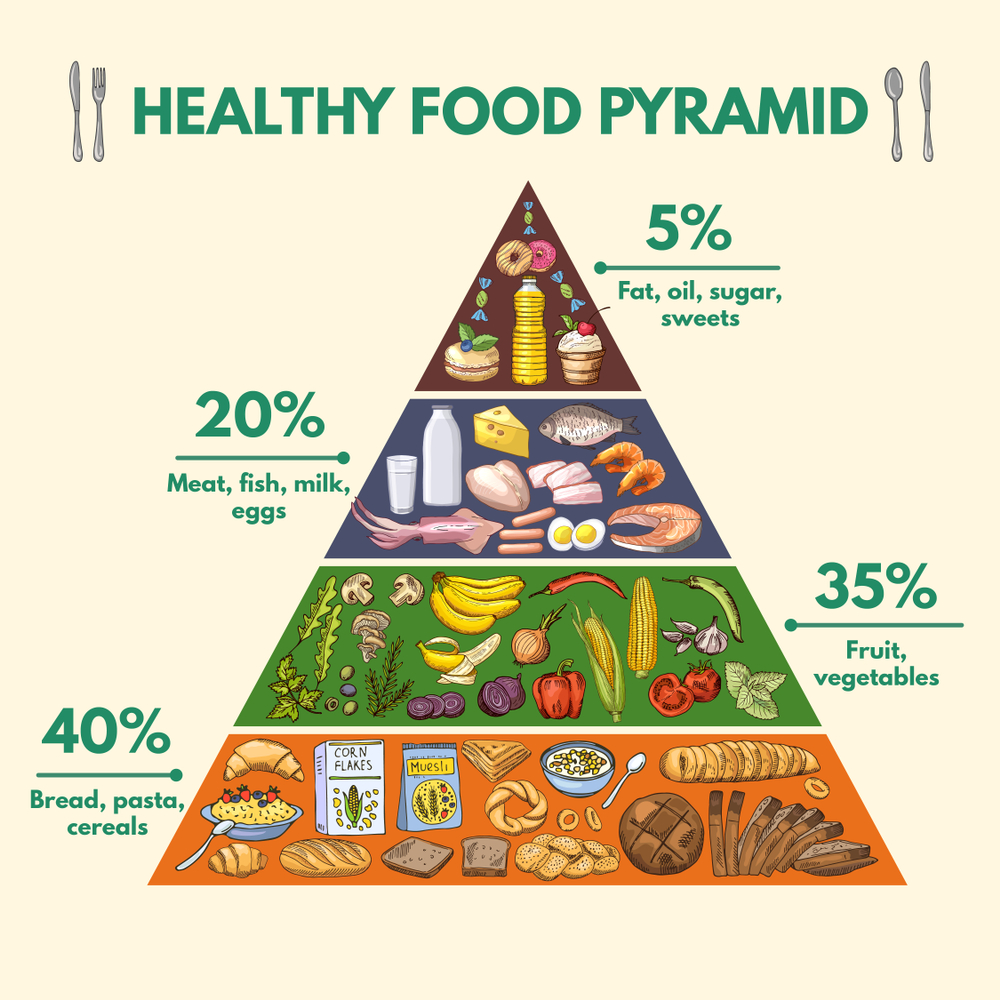 Food Pyramid Chart Download A Free Preview Or High Quality Adobe Illustrator Ai Eps Pdf And Hi Food Pyramid Food Pyramid Kids Dental Health Preschool Crafts