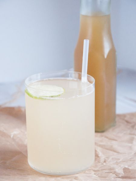 Ginger Beer | cucina - cuisine | Pinterest | Alcohol free, Cucina ...