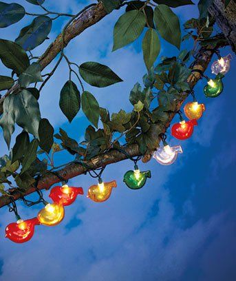Novelty Birds String Lights Great For Camper Awning Rv Patio Or Deck