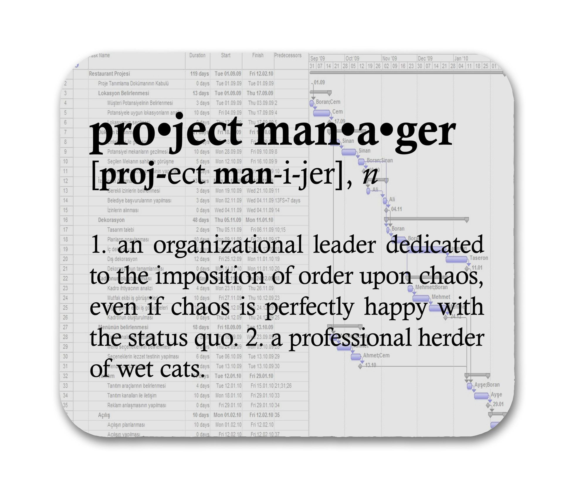 Funny Project Management: Project Manager Definition Funny Quote Mouse Pad