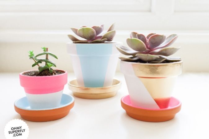 HOW TO: COLOUR BLOCK SUCCULENT POTS » Oh My Superfly