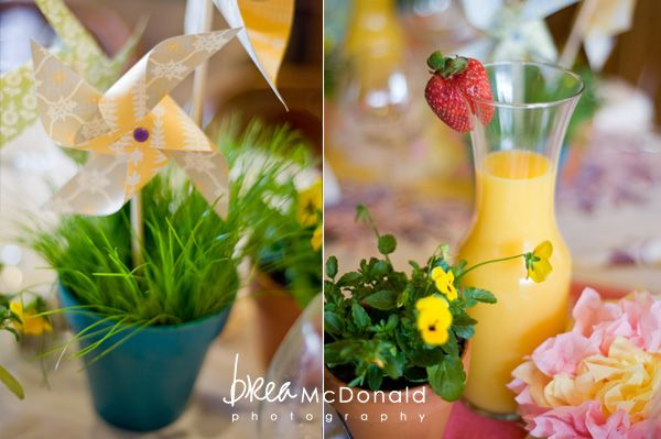 Baby Shower Garden Party | Gardens, Grasses and Baby showers