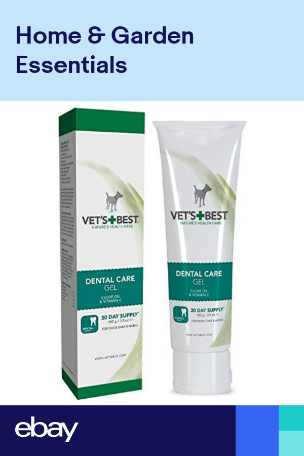 Vets Best Dental Gel Toothpaste for Dogs | Dog toothpaste ...
