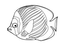 Bunter Fisch Ausmalbilder Fische Malvorlage Fisch Fische
