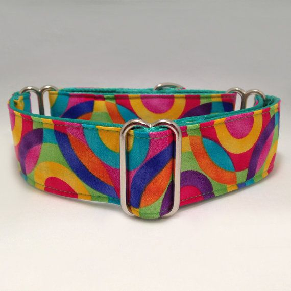 1.5 inch Martingale Collar Colorful Circles by fabcollarhounds