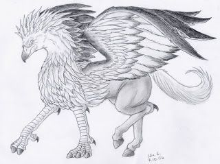 El Grifo Y El Hipogrifo Asas Desenho Desenho A Lapis Desenhos Aleatorios