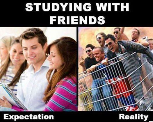 Funny Pictures of the day - Studying with friends .. expectation vs reality (145 Pics)