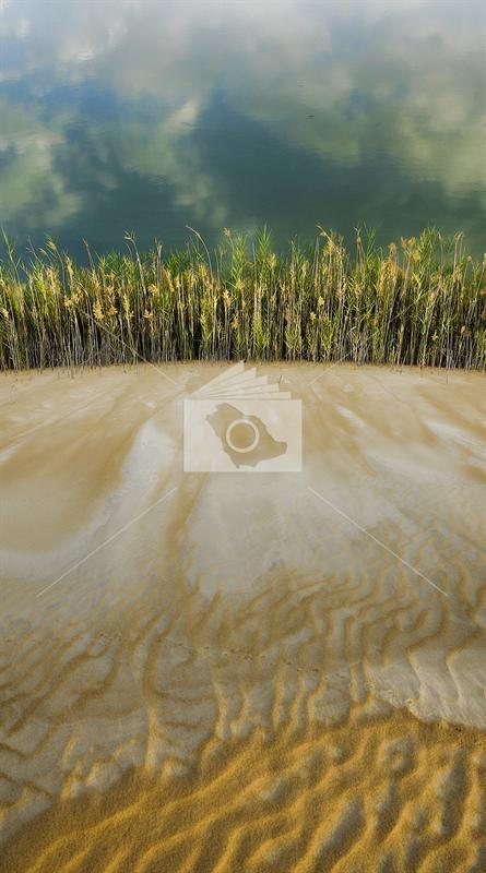 بحيرة الاصفر في محافظة الاحساء Outdoor Beach Water