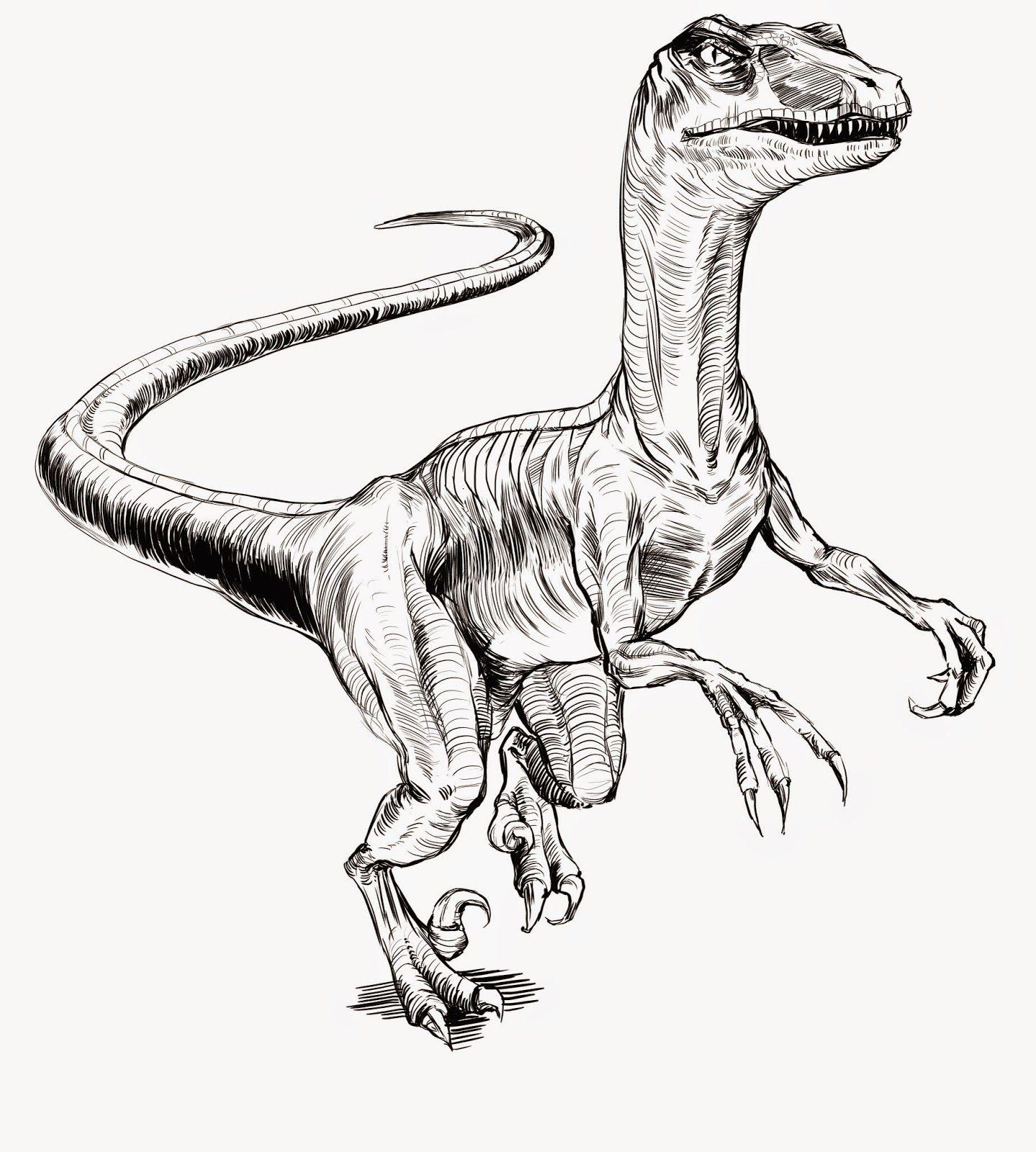 Fantástico El Velociraptor Del Mundo Jurásico Para Colorear Fotos ...