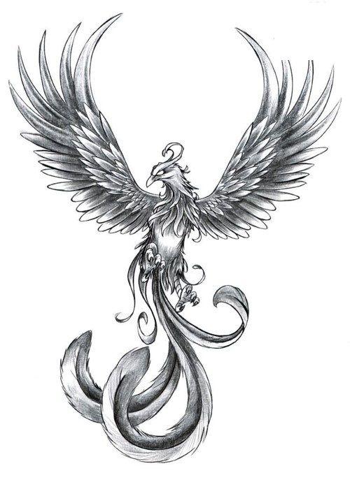 Grey-Phoenix-With-Wings-Open-Tattoo-Design-1.jpg (500×687) | tattoo ...