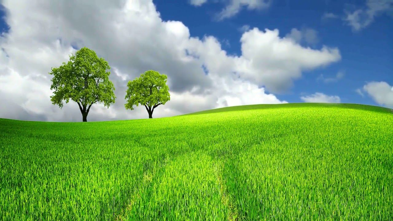 Pin By Milan Rimal On Greenscreen Greenscreen Video Background Nature Gif
