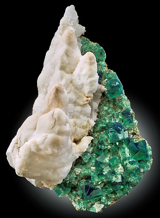 White stalactites of Aragonite perched alongside green Fluorite, Rogerley Mine, England