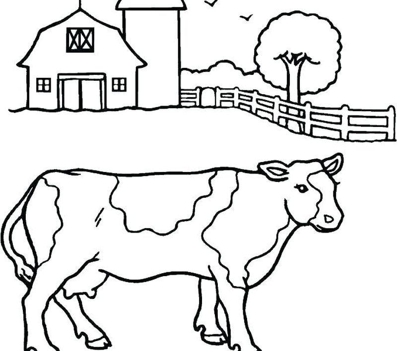 Pin Di Animal Coloring Pages
