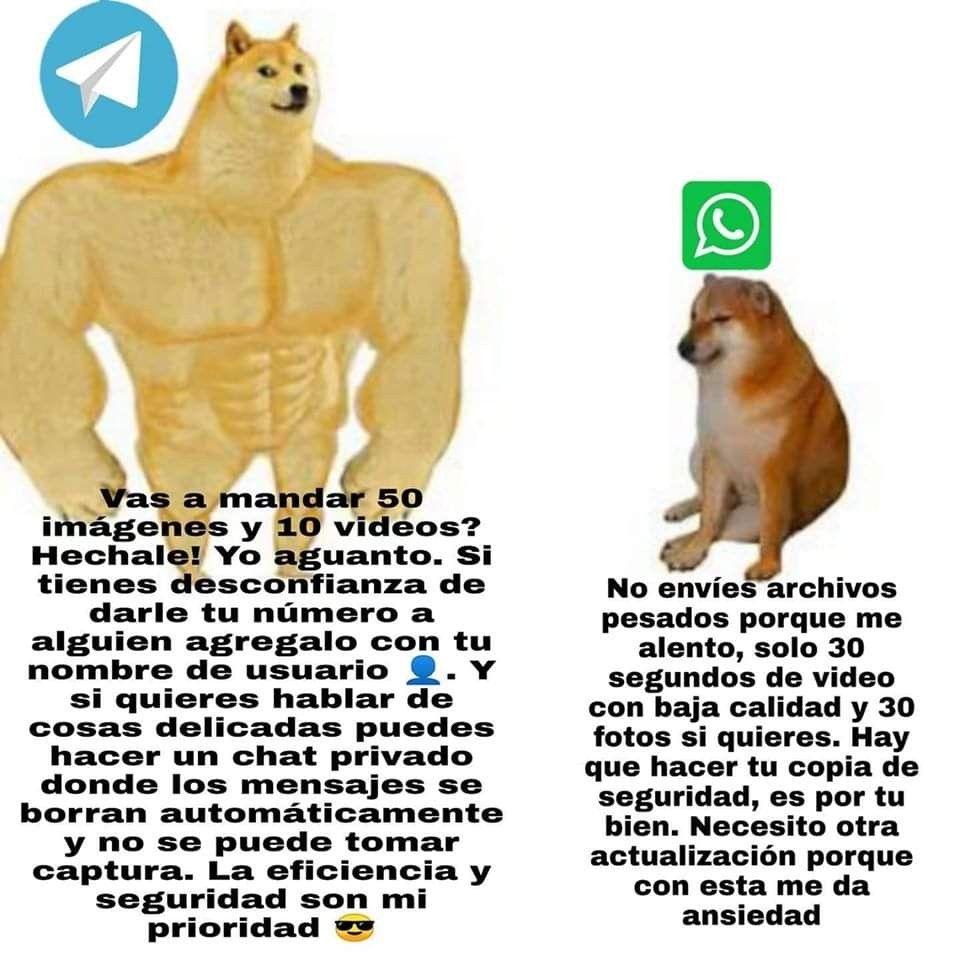 Memes Perro Grande Y Perro Chiquito Pequeno Doggo Chems Cheems Perrito Whatsapp Memes Graciosos Memes Divertidos Memes Chistosisimos