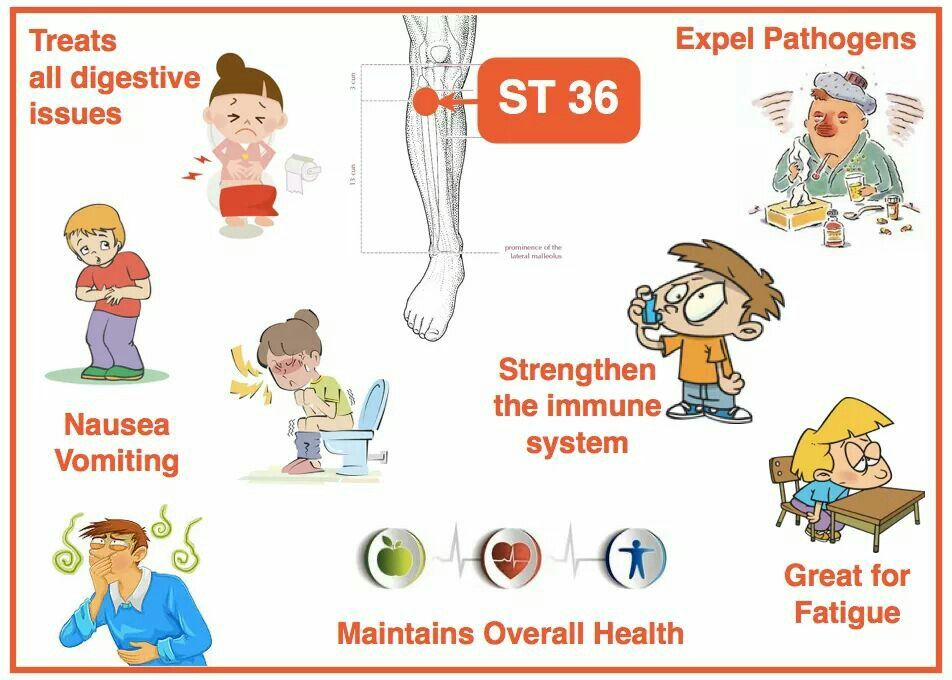 Stomach 36 point | Acupuncture, Acupuncture points ...
