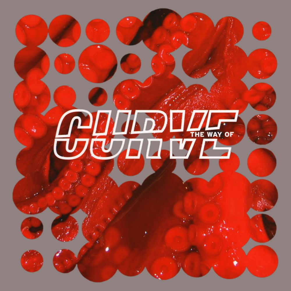 Curve - The Way Of Curve