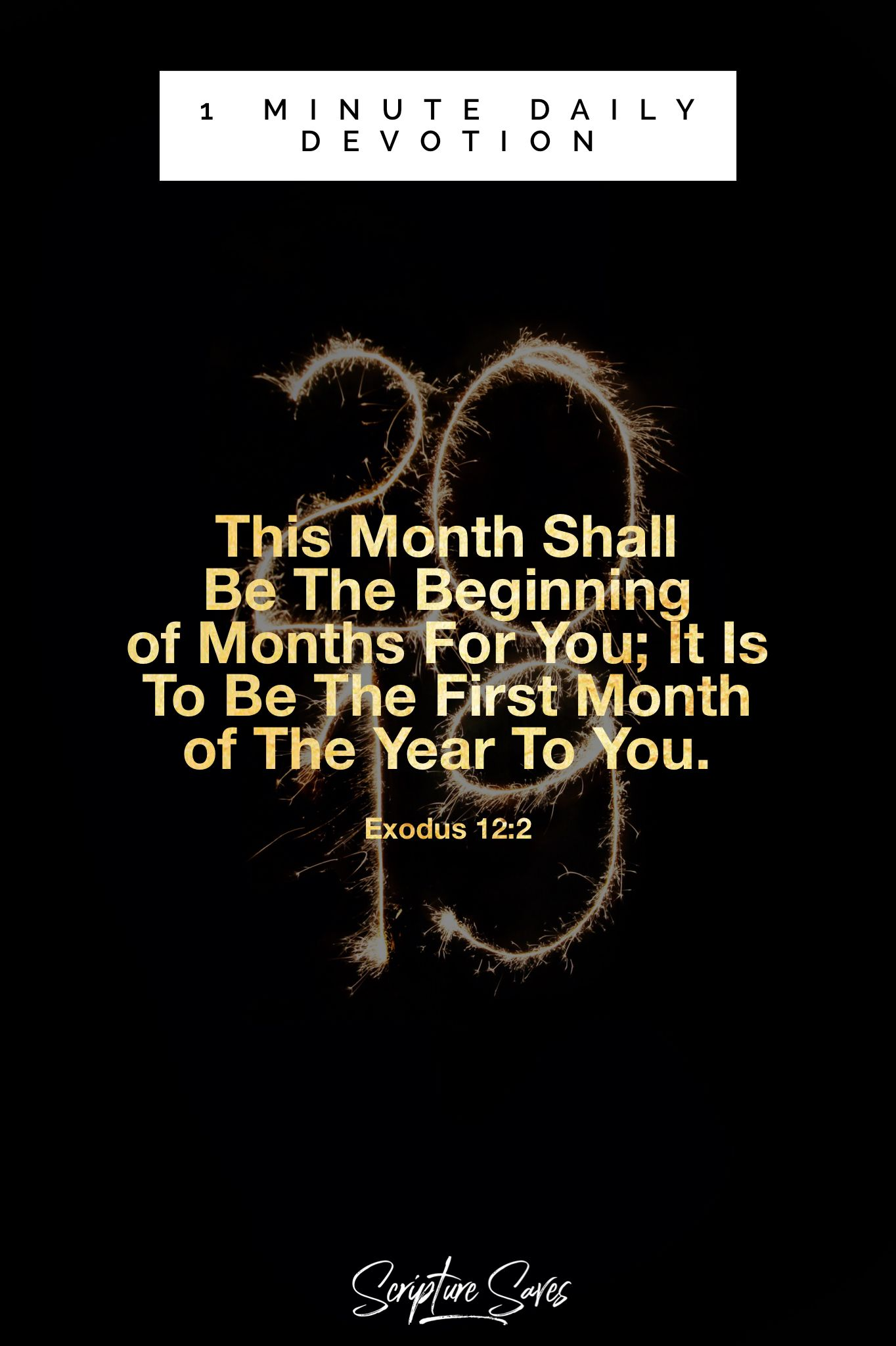 2019 Is The Beginning of 12 New Months For You New year