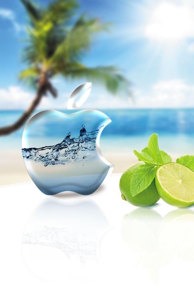 Iphone Wallpaper Beach Laggydogg Apple Ipad Match