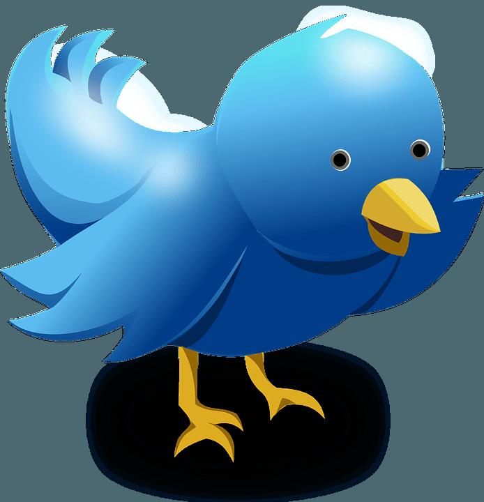 """Comment activer la fonction """"Best Tweet"""" de Twitter sur"""