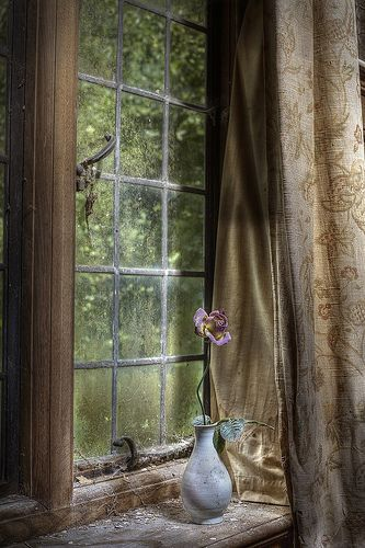 Rustic old window....would love to clean up this setting ...I like pristine rustic