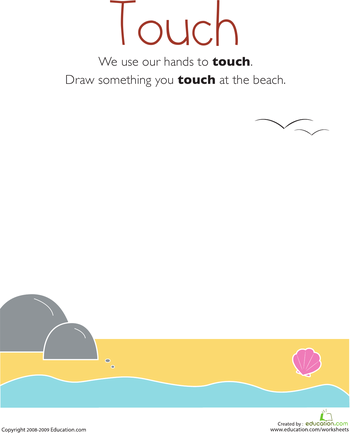 Our Five Senses: Touch | Worksheets, Kindergarten science and ...
