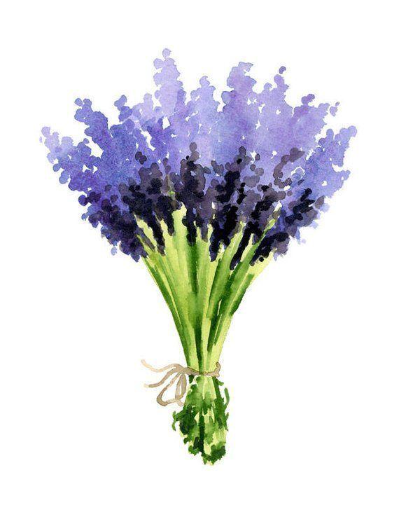 Lavendel Kunstdruck Lavendel Bukett Blumendekor Aquarell Flo