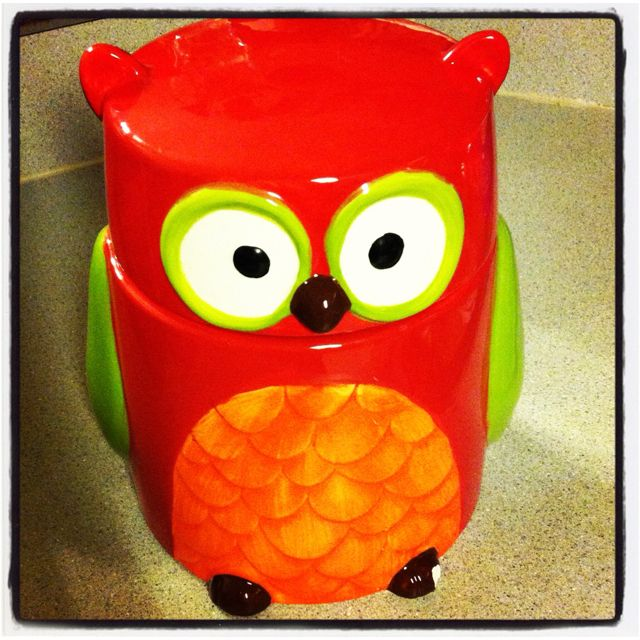 Owl cookie jar from Barnes and Noble