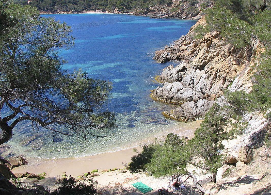 Fond D Ecran Le Lavandou Plage Photos Provence Le Lavandou Photo Plage Cote D Azur