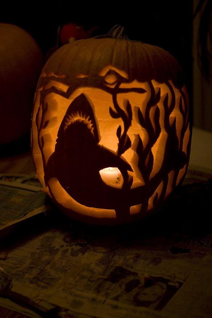 Shark pumpkin stencil google search pumpkins