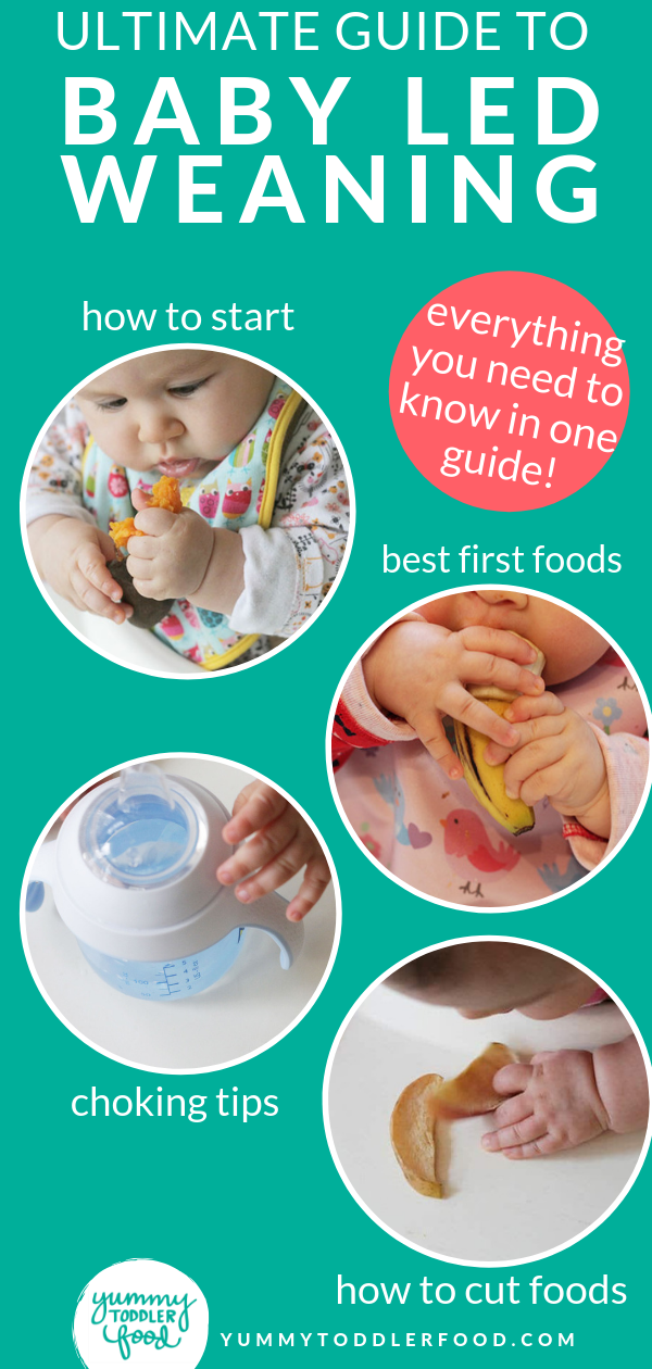 Ultimate Guide to Baby Led Weaning (and Best First Foods)