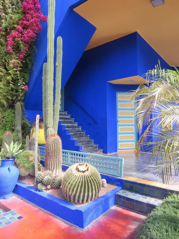 Jardin majorelle marrakesh morocco by city bitches abroad beautiful art deco gardens founded by yves st laurent in the ville nouvelle of marrakech