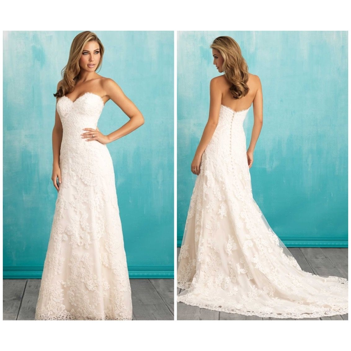 Luxury Plus Size Wedding Dress Designer Ideas - All Wedding Dresses ...