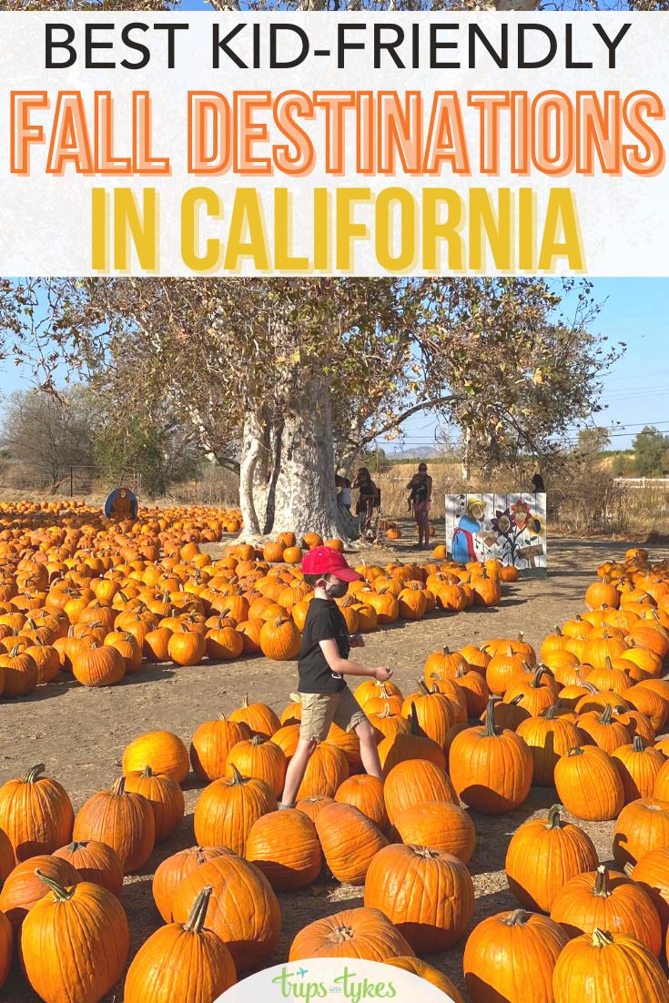 10 Amazing Fall Destinations In California For Families In 2020 Autumn Destinations California Travel California