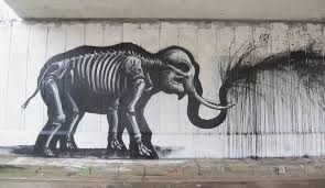 Image result for roa
