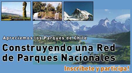Cuidando nuestros parque chilenos.
