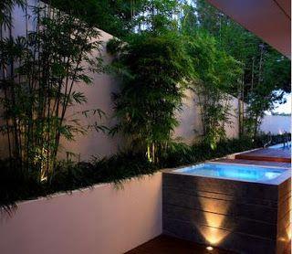 fotos de jardin tipos de jardines para casas