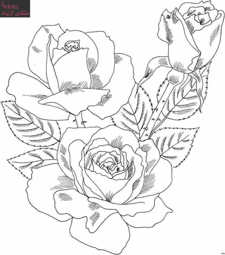 Dessin à Colorier Bouquet De Fleurs Nature 11