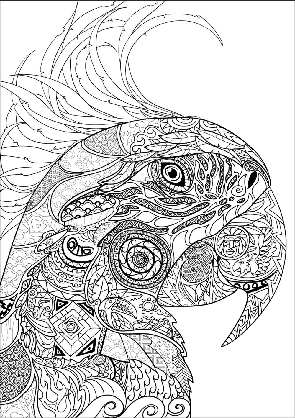 Coloriage coloriage perroquet coloriage anti stress - Art coloriage ...