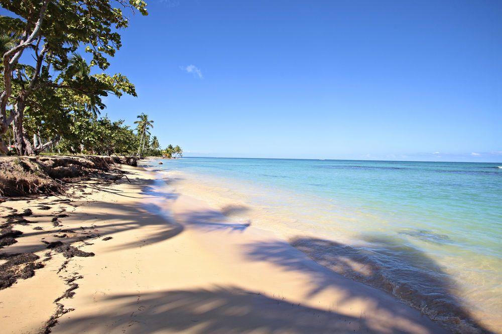 Grand Bahia Principe El Portillo All Inclusive Las Terrenas Dominican Republic Trip Bahia Samana