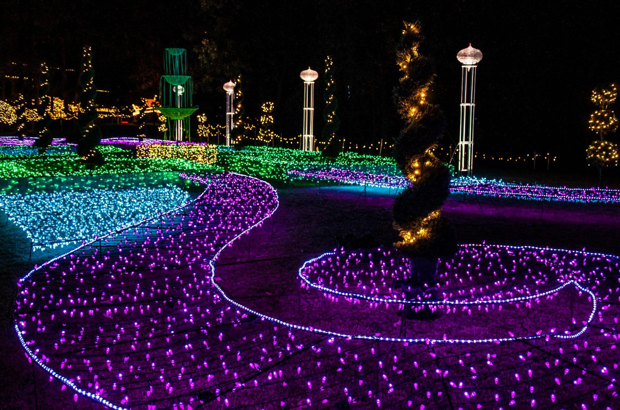 b854201fbd708dc34a6f8968bab743d1 - Garvan Gardens Hot Springs Christmas Lights