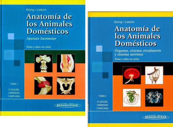 Köning (2005) Anatomía de los Animales Domésticos, 2da. edición reimp., Tomos 1 y 2 [PDF] – elblogdeedzehog