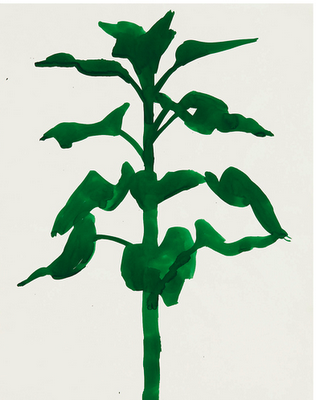 [Ellsworth Kelly, Sunflower, 1957. Watercolor on paper.   Private collection © Ellsworth Kelly.]  found on style court