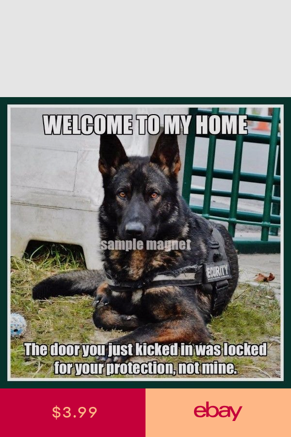 German Shepherd Protection Memes