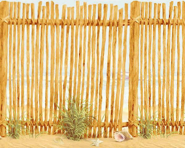 Cheap fence ideas beach wall accent border ocean fence for Cheap wall border