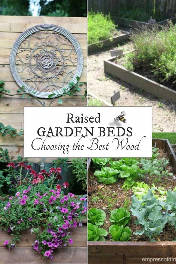 Want To Know The Best Wood For Raised Garden Beds? Raised Beds Are Garden  Containers Made From Wood And The Type Of Woodu2026   Small Backyard Design  Ideas ...