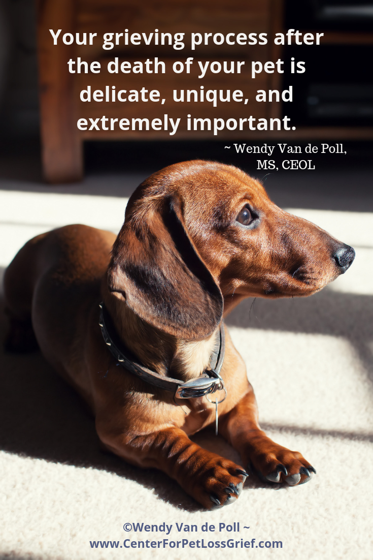 Pet Loss and Grief Support | Pet Loss Quotes | Pet loss