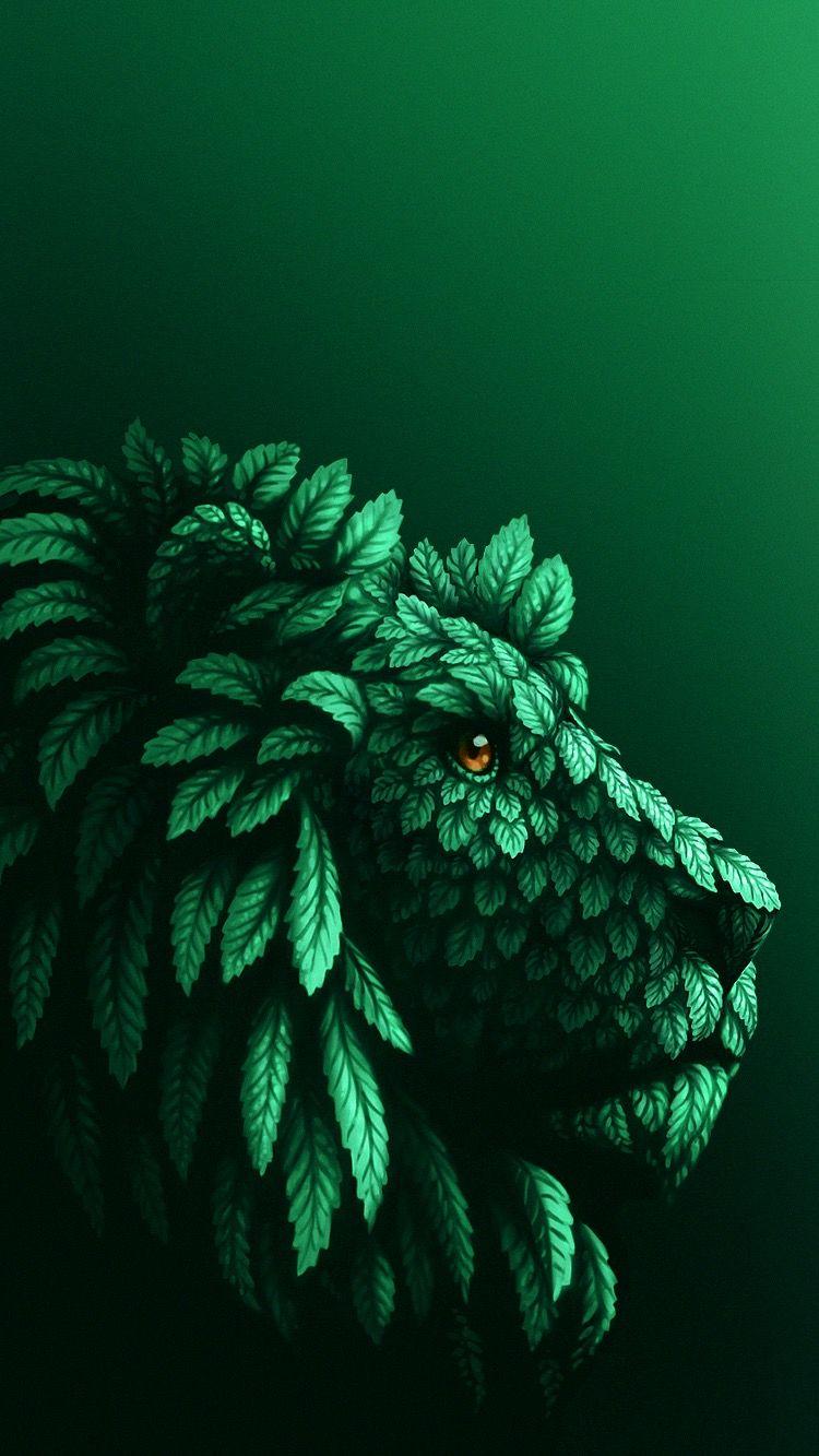 Gs Fond D Ecran Vert La Vie En Couleur Fond D Ecran Portable