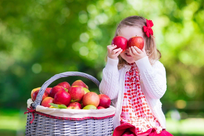 Apple of Your Eye: Bite into Fall's Favorite Harvest Fruit